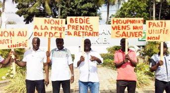 Côte-d'Ivoire: La fable de la grenouille PDCI et du scorpion RDR