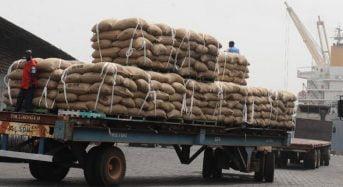 Au port d'Abidjan en Côte-d'Ivoire, des camions déchargent des tonnes de café, après un mois de grève (REPORTAGE)