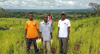 Les personnes physiques en Côte d'Ivoire peuvent désormais bénéficier de certificats fonciers sur les terres agricoles