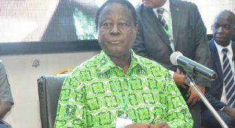 Élections du 13 octobre en Côte-d'Ivoire: La jeunesse du PDCI annonce des «manifestations éclatées le jour du scrutin»