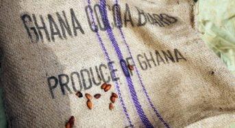 La Côte-d'Ivoire et le Ghana franchissent une nouvelle étape dans leur coopération sur le cacao