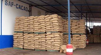 Côte d'Ivoire: La vente de SAF-Cacao à Prime Group of Companies prend du plomb dans l'aile