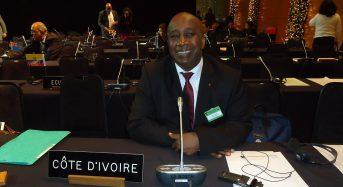 Flash info: L'Ivoirien Aly Touré passe à la vice-présidence du Conseil international du sucre (OIS)